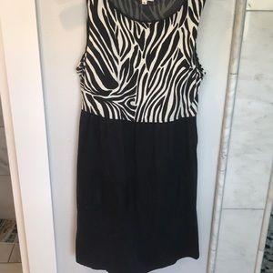 Cute Zebra print tank dress